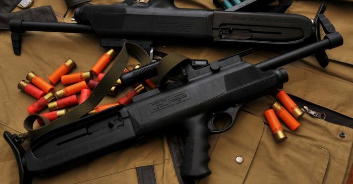 Ружье и патроны